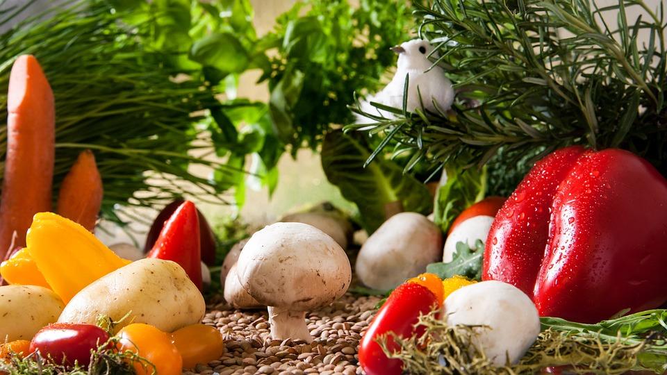 有機野菜 自然療法