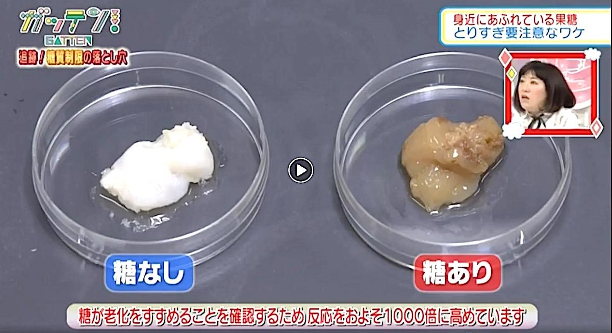 「果糖ぶどう糖液糖」に関する実験